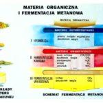 Odnawialne źródła energii wersus-nauka.pl (7)