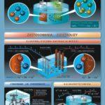 chemia wersus-nauka (2)